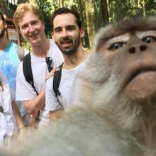 Monkey Selfie, Magnet Baru Monkey Forest Ubud